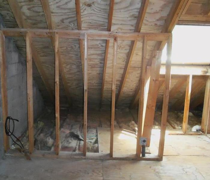Attic Mold  in Saugus, MA After