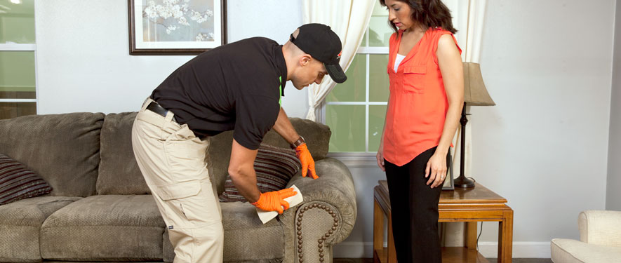 Wakefield, MA carpet upholstery cleaning